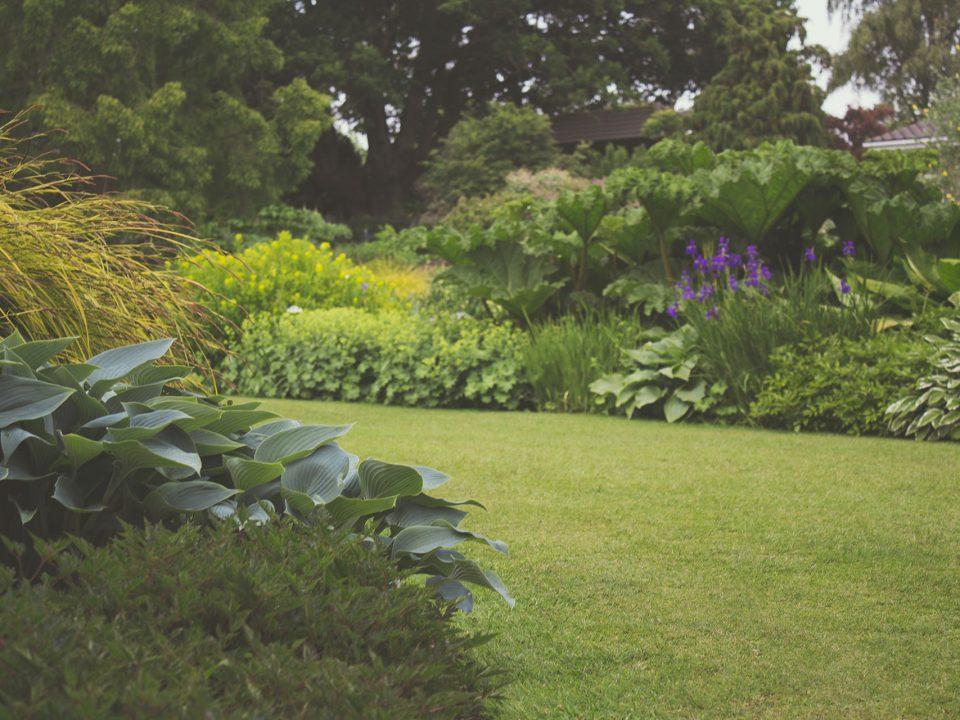 Jak zaaranzowac przydomowy ogrod